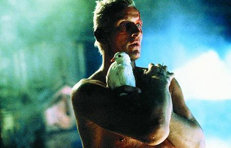 Rutger-Hauer-as-Roy-Batty-blade-runner-19275549-453-290 (via fanpop.com)